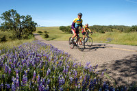 2015 - 7th Annual Tour of Paso Robles